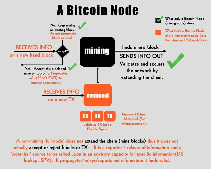 function of Bitcoin node vs SPV node