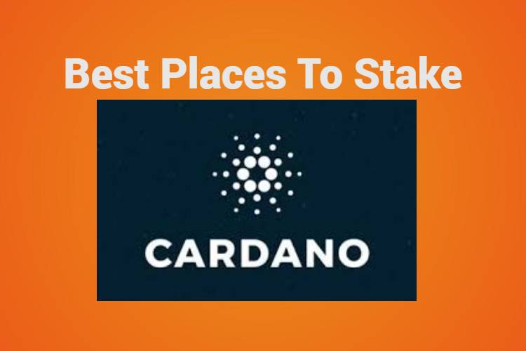 Best places to stake Cardano
